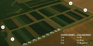 Developing a crop rotation map image