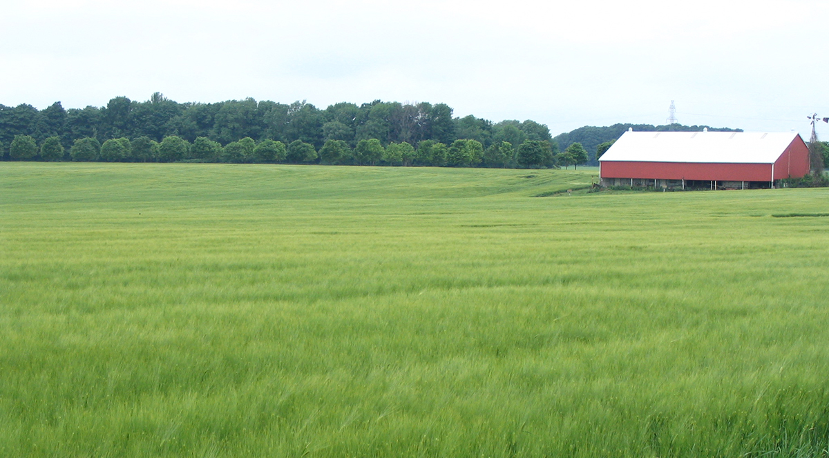 View over Canadian farm fields