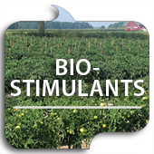 Bio-Stimulants button link image