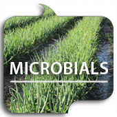 Microbials button link image