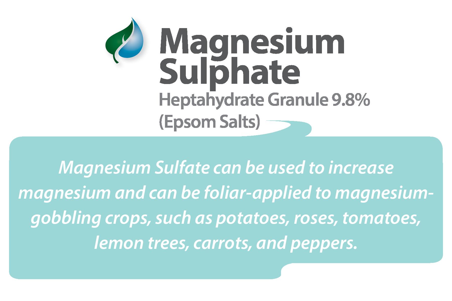 Magnesium Sulfate (e-store)