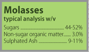 Molasses Analysis Block 300